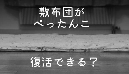 【睡眠コンサル執筆】敷布団がぺったんこ!復活できる?できないなら有効活用は?