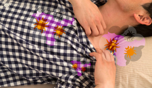 【睡眠コンサル執筆】敷布団の正しい掃除方法は?カビやダニが気になって困る!